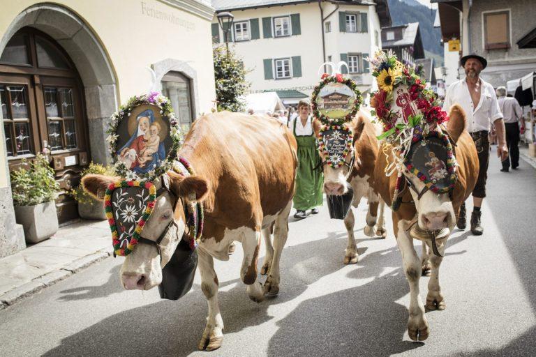 Familienurlaub Appartemen kaufen Rauris Pinzgau
